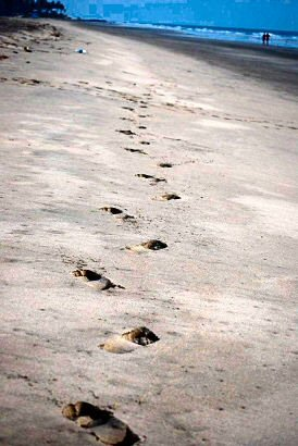 Footsteps on Mandrem Beach